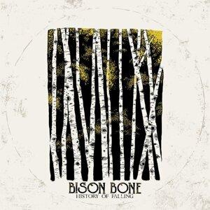 Bison Bone 歌手頭像