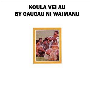 Caucau Ni Waimanu 歌手頭像