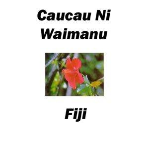Caucau Ni Waimanu Fiji 歌手頭像