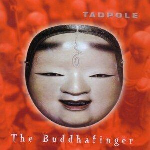 Tadpole 歌手頭像