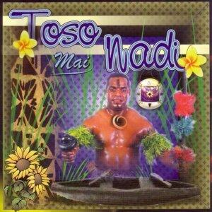 Toso Mai Nadi 歌手頭像