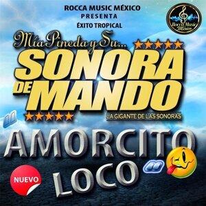 Mia Pineda y Su Sonora de Mando 歌手頭像