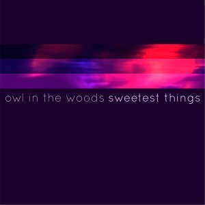 Owl in the Woods 歌手頭像