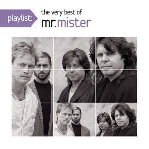 Mr. Mister (密斯特先生合唱團) 歌手頭像