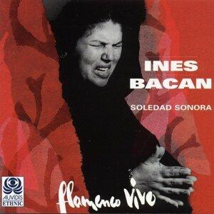 Inés Bacán 歌手頭像