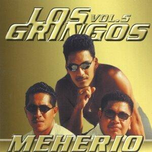 Los Gringos 歌手頭像