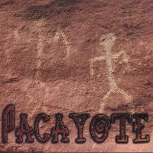 Pacayote 歌手頭像