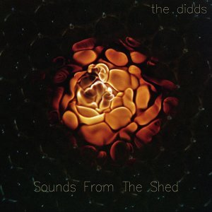 The Didds 歌手頭像