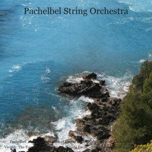 Pachelbel String Orchestra, Walter Rinaldi 歌手頭像