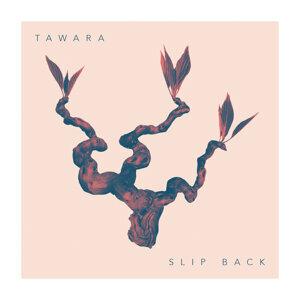 Tawara 歌手頭像