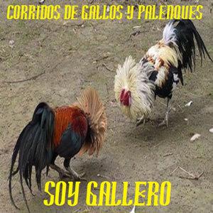 CORRIDOS DE GALLOS Y PALENQUES 歌手頭像