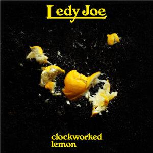 LEDY JOE 歌手頭像