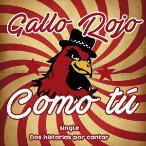 Gallo Rojo 歌手頭像