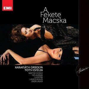 Karafiáth Orsolya, Tóth Evelin 歌手頭像