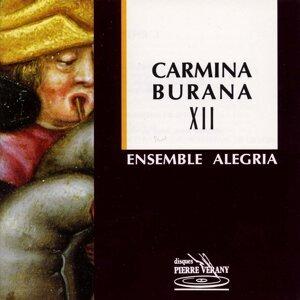 Ensemble Alegria, Denis Zaidman, Jean-Michel Deliers, Francisco Orozco, Rémi Vilain 歌手頭像