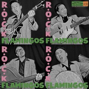 R.O.C.K FLAMINGOS 歌手頭像