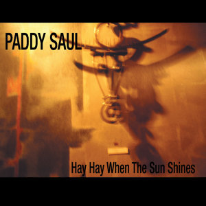 Paddy Saul 歌手頭像