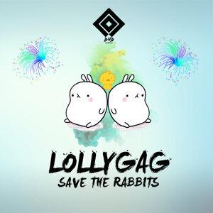 Save the Rabbits 歌手頭像