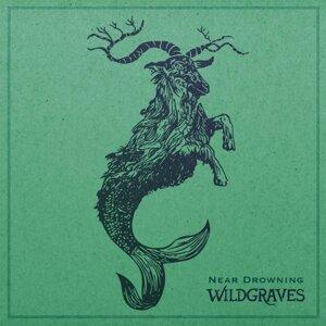 Wildgraves 歌手頭像