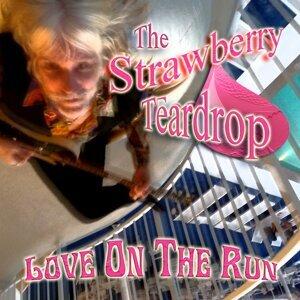 Steve Lucas, The Strawberry Teardrop 歌手頭像