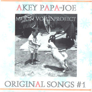 akey papa-joe 歌手頭像
