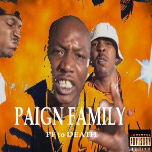 Paign Family 歌手頭像