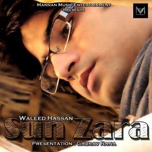 Waleed Hassan 歌手頭像