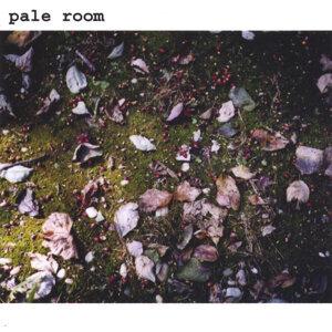 pale room 歌手頭像