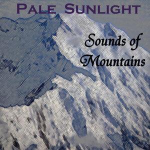 Pale Sunlight 歌手頭像