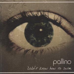 Pallino 歌手頭像
