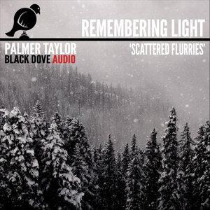 Palmer Taylor 歌手頭像