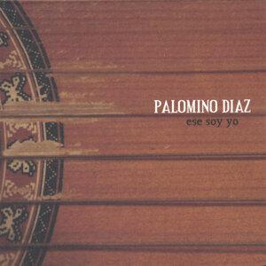 Palomino Diaz 歌手頭像