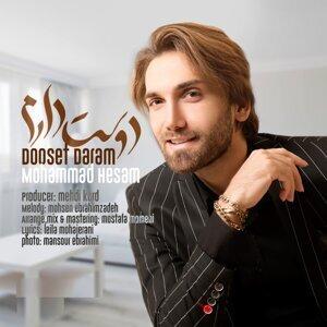 Mohammad Hesam 歌手頭像