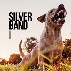 Silverband 歌手頭像