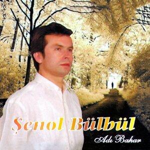 Şenol Bülbül 歌手頭像