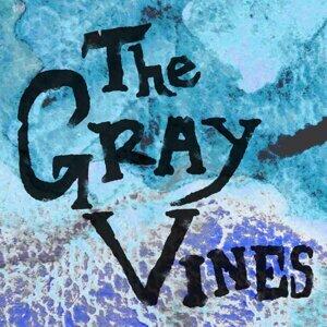 The Gray Vines 歌手頭像