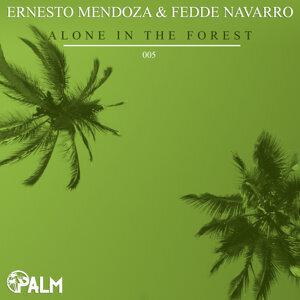 Ernesto Mendoza, Fedde Navarro 歌手頭像