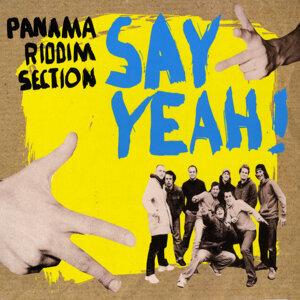 Panama Riddim Section 歌手頭像
