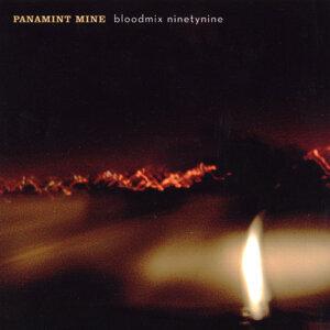Panamint Mine 歌手頭像