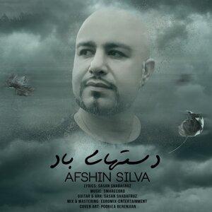 Afshin Silva 歌手頭像