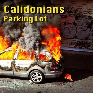 Calidonians 歌手頭像