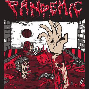 Pandemic 歌手頭像