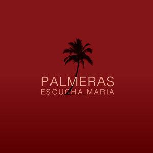 Palmeras 歌手頭像