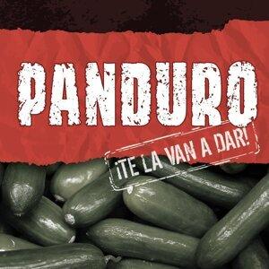 Panduro 歌手頭像