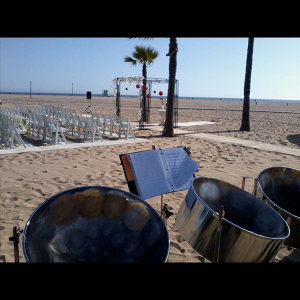 Panjive Steel Drum Wedding 歌手頭像