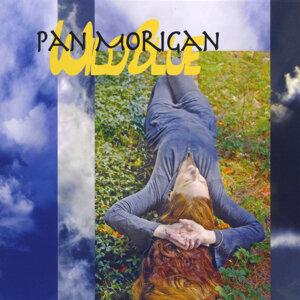 Pan Morigan 歌手頭像