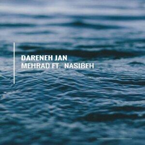 Mehrad Feat. Nasibeh 歌手頭像