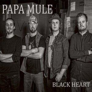 Papa Mule 歌手頭像