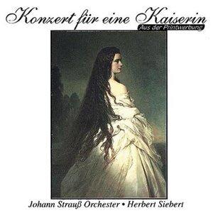 Herbert Siebert, Johann Strauss Orchester 歌手頭像