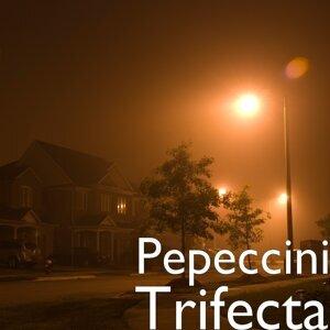 Pepeccini 歌手頭像